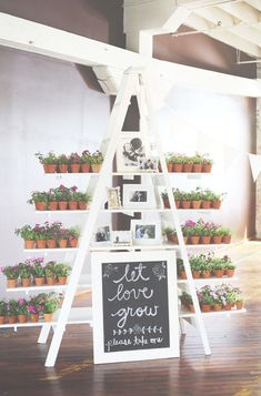 Wedding Favors For Outdoor Wedding DIY Wedding Cake Favor Boxes Wedding Favors And Gifts, Succulent Wedding Favors, Wedding Flowers, Wedding Plants, Party Favours, Wedding Guest Favors, Wedding Favor Table, Wedding Dresses, Wedding Favour Plants