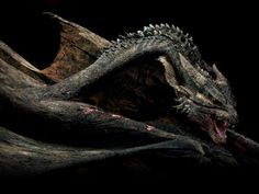 Reign Of Fire   Dragon