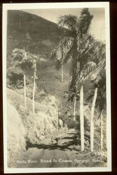 Road to Coamo Hot Springs, Carretera PR 546 Road, Bo. San Idelfonso Coamo, Puerto Rico, 1910