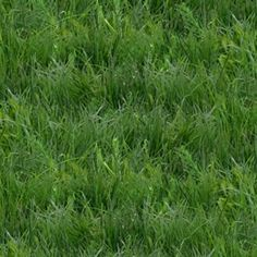 This Landscape Medley Green Grass Lawn Turf Cotton Fabric from Elizabeth's Studio is perfect for quilting, crafts, and sewing projects and is available at 4my3boyz Fabrics.