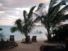 Here's my picture of what I woke up to every morning at Forfar Field Station on Andros Island, Bahamas....<3