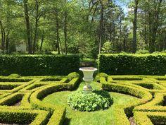 Boxwood Garden, Vineyard, Outdoor, Outdoors, Vine Yard, Vineyard Vines, Outdoor Games, The Great Outdoors