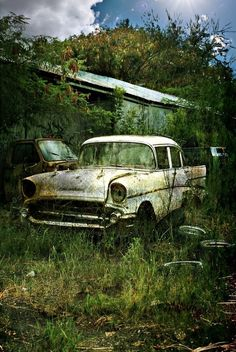 1957 Chevy #Abandoned #Forgotten