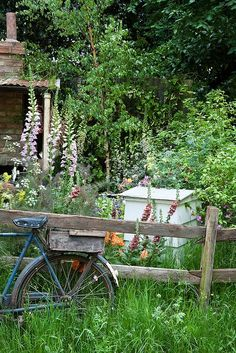 Country life - foxgloves, bicycle and beehive ||| dividing the garden between the brambles and the farmhouse