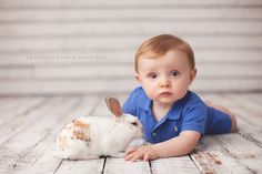 Bunny mini-sessions!!!