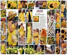 Bill Cunningham - On the Street: In Flower, August 14th 2011 http://video.nytimes.com/video/2011/08/12/fashion/100000000996656/on-the-street-in-flower.html
