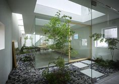 indoor garden -Moriyama House