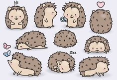 Premium Vector Clipart - Kawaii Hedgehogs - Cute Hedgehogs Clipart Set - High Quality Vectors - Inst