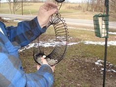 slinky bird feeder