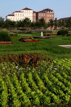 The Gardens of the Royal Palace of Venaria Reale - UNESCO World Heritage Site, Turin, Piemonte, Italy