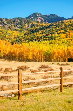 Fall Colors (Cripple Creek, Colorado) by Delores Poll on 500px