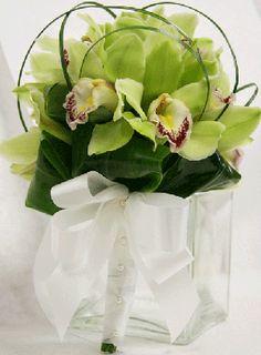 Green Cymbidium Orchids grown in Hawaii. www.reneethomasdesigns.com