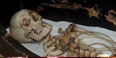 Long-Lost Mummy of Pharaoh's Foster Brother Found nore