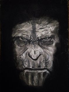 Dawn Of The Planet Of The Apes by Robreed648 on @DeviantArt