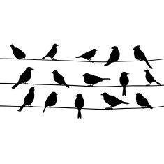 Cute black birds on a wire vector art illustration