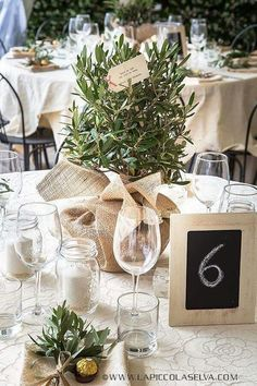 Olive tree centrepieces wedding- I like this for the greenery inspiration, but d. Olive tree centrepieces wedding- I like this for the greenery inspiration, but don't plan to go as simple as burlap. I'm going to stick with gold accents and clear glass. Tree Centrepiece Wedding, Wedding Table Centres, Rustic Wedding Centerpieces, Wedding Table Decorations, Wedding Table Centerpieces, Wedding Rustic, Potted Plant Centerpieces, Wedding Ideas, Italian Table Decorations