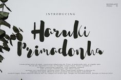 Haruki Primadonha By MissinkLab Studio