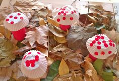 paddenstoelen met cupcake papier