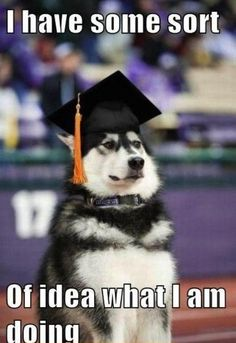 post graduation problems - this will be me in a year