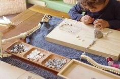 The Human Body: Building a Skeleton | An Everyday Story        loose parts inspiration
