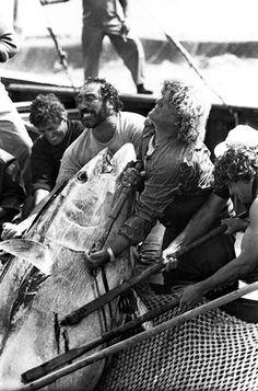 #favignana #sicily #fishing #tonnara #tonnaraflorio #sicilia #tuna #fish