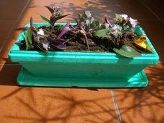 DIY jardiniere from an icecream bowl! Ice Cream Bowl, Terrarium, Icecream, Clever, Diy, Home Decor, Ideas, Terrariums, Ice Cream