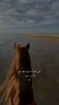 Unique Love Quotes, Beautiful Love Pictures, Beautiful Quran Quotes, Beautiful Gif, Iphone Wallpaper Quotes Love, Cute Wallpapers Quotes, Horse Girl Photography, Sunset Photography, Black Books Quotes