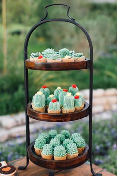 Wedding Food cactus cupcakes - Want to utilize cacti and succulents in your desert wedding, but don't know how? Try one of these 12 ideas on for size. For more wedding decor inspo, head to Domino. Kaktus Cupcakes, Succulent Cupcakes, Garden Cupcakes, Bar Mexicano, Cactus Cake, Cactus Cactus, Indoor Cactus, Tiny Cactus, Cactus Decor