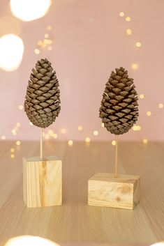 DIY Weihnachten Geschenk Dekoration Creative DIY idea to make your own: A great DIY for Christmas and to match the winter season. Great as a gift and for decorating. Scandinavian Christmas Decorations, Christmas Gift Decorations, Diy Christmas Gifts, Christmas Time, Christmas Ornaments, Christmas Ideas, Danish Christmas, Pine Cone Decorations, Diy Wood Signs