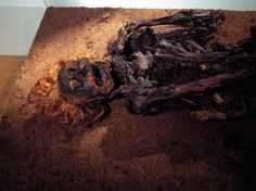 He's a bog body from Bourtanger Moor in Germany, named for the color of his hair, beard, and eyebrows. He lived some time between 200 and 400 A. His hair wasn't red in real life; likely, the reddening was caused by the acids in the peat. Archaeological Discoveries, Archaeological Finds, Lindow Man, Tollund Man, Bog Body, Post Mortem, Iron Age, Pulled Pork, Portrait