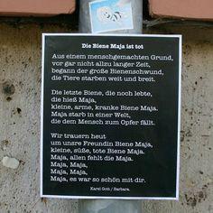 "Reposting @ich_bin_barbara:  ... ""#bienensterben #insektensterben #glyphosat #bienemaja #barbara #dasklebenistschön #berlin"""