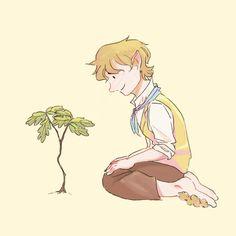 Bilbo's tree