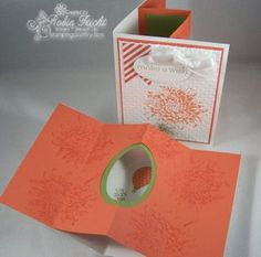 A Tunnel Card is a Pop Out Card with Flair.  Learn how to make this simple, but beautiful card with Stampin' Up! Demonstrator, Robin Feicht  http://stampingcountry.typepad.com/stamping_country/2013/02/tunnel-card-video-tutorial.html