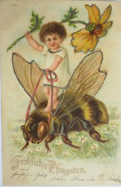 not a cockchafer. Holiday Postcards, Vintage Postcards, Vintage Images, Vintage Sweets, Classic Fairy Tales, Bee Art, Fairytale Art, Vintage Paper, Cupid