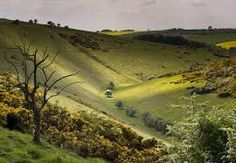 The Yorkshire Wolds