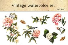 Check out Vintage watercolor set by AnnaY on Creative Market