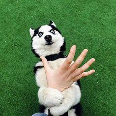 I said no touching