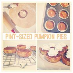 pint-sized pumpkin pie tutorial