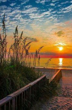 ~~OBX Rise and Shine sunrise, Outer Banks, North Carolina by Tyler Peedin~~ Beautiful Sunrise, Beautiful Beaches, Landscape Photography, Nature Photography, Image Nature, Nature Nature, Nature Pictures, Belle Photo, Amazing Nature