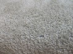 Wall-to-Wall Carpeting 175820: Wall To Wall Carpet Shadow Gray -> BUY IT NOW ONLY: $89 on eBay!