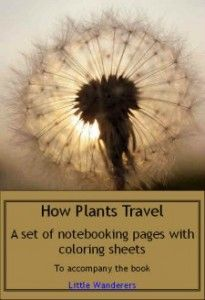 """57 FREE How Plants Travel NB pgs.. These plant pages could be used alone,or with the FREE ebook """"Little Wanderers"""" This is a neat find, because all the resources are FREE!!"""