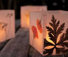 Try This: Pressed Flower Luminaria - DIY Projects - Mother Earth Living