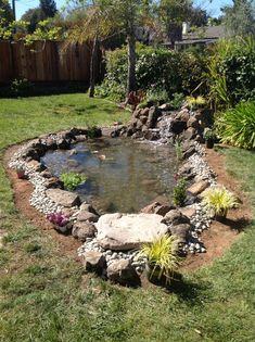 Certified Aquascape Contractor ( CAC ) - All For Garden Outdoor Ponds, Ponds Backyard, Outdoor Gardens, Garden Pond Design, Garden Pool, Water Garden, Fish Pond Gardens, Diy Pond, Natural Pond