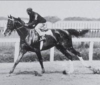Alan-A-Dale | Winner of the 28th Kentucky Derby | 1902 | Jockey: James Winkfield | 4-Horse Field | $4,850 prize