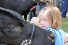 Determination: it's what 4-H and showing livestock do for you.