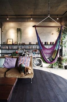 Book shelves and hammock chair