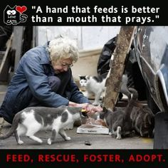 Feed, Rescue, Foster, Adopt & Love