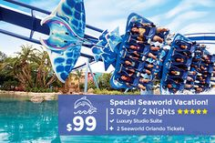 Orlando Vacation: Vacation Packages and Specials Orlando Vacation, Orlando Resorts, Vacation Deals, Vacation Trips, Florida Vacation, Travel Deals, Budget Travel, Affordable Vacations, Great Vacations