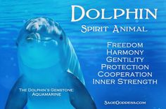 The world's largest selection of healing crystals, gemstones, perfumes, astrological and chakra tools, and more for your metaphysical or spiritual practice. Spirit Animal Totem, Animal Spirit Guides, Animal Meanings, Animal Symbolism, Dolphin Quotes, Ocean Quotes, Dolphins Tattoo, Animal Medicine, Bottlenose Dolphin