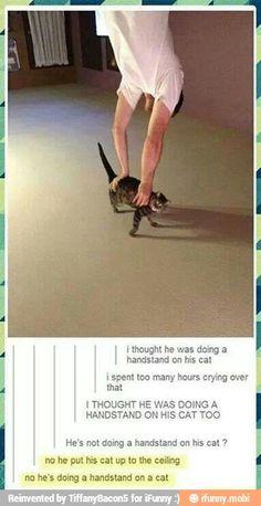 LOL!!! :) / iFunny :)
